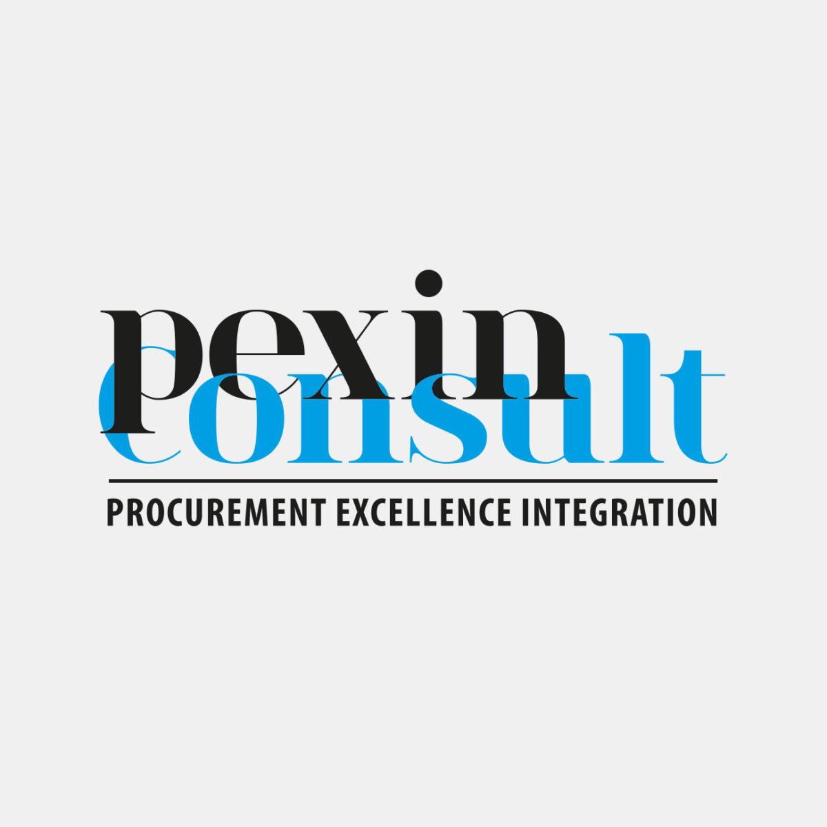 Pein Logodesign