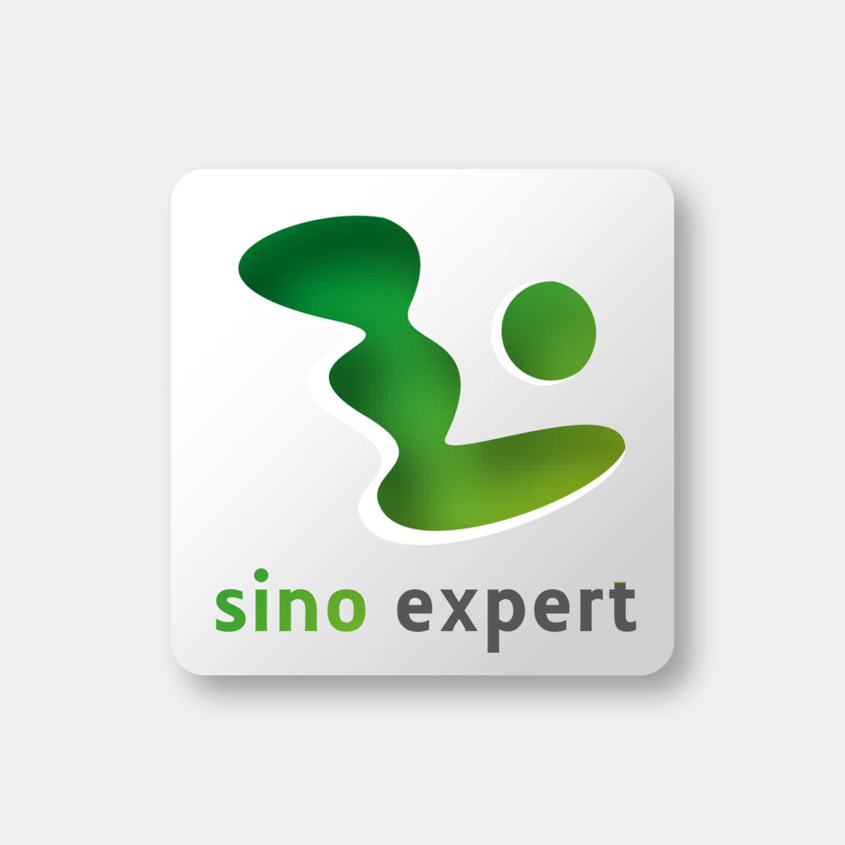 Sino Expert Logodesign
